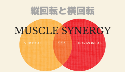 Muscle synergyと縦回転・横回転