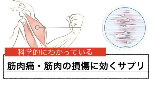 筋肉痛・筋損傷に効くサプリメント